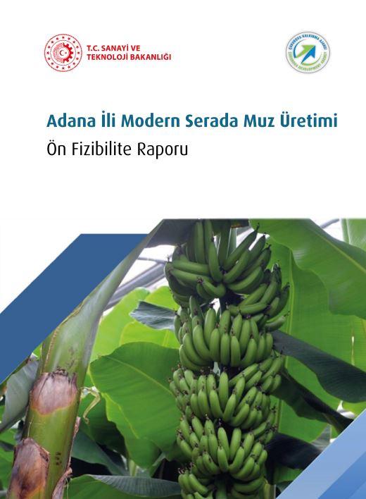 Adana ili Modern Merada Muz Üretimi Ön Fizibilite Raporu